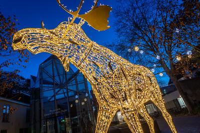 Lichtobject Henry the Moose op Lamme van Dieseplein