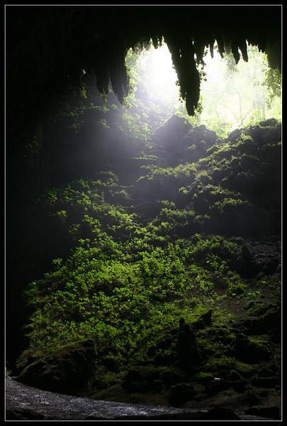 Sunlight Streaming