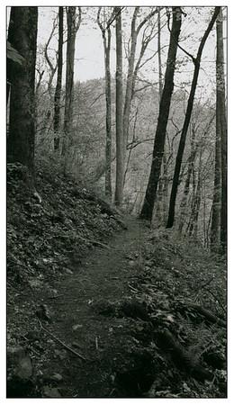 The Road Ahead Seems Endless
