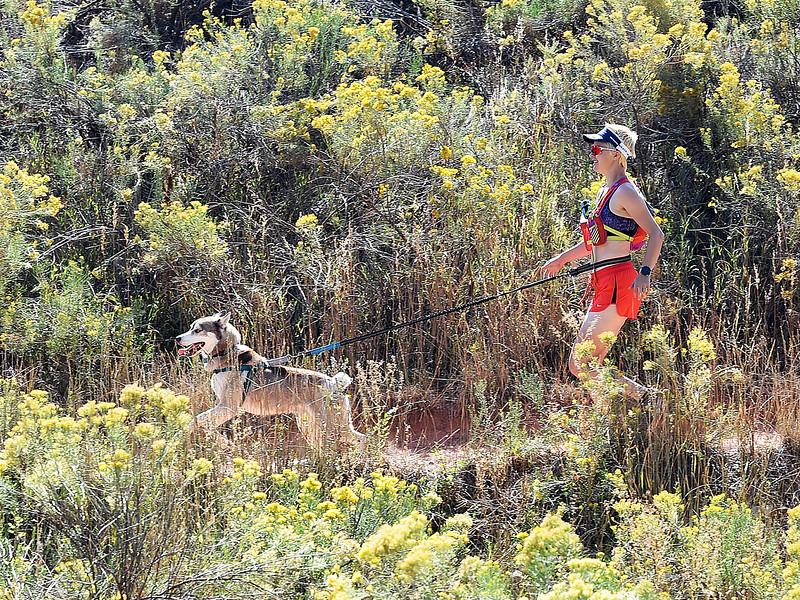 Jessy Nelson runs with her dog, Buddy Nubby on Friday, Sept. 21, 2018, at the Devil's Backbone Open Space in Loveland.  (Photo by Jenny Sparks/Loveland Reporter-Herald)