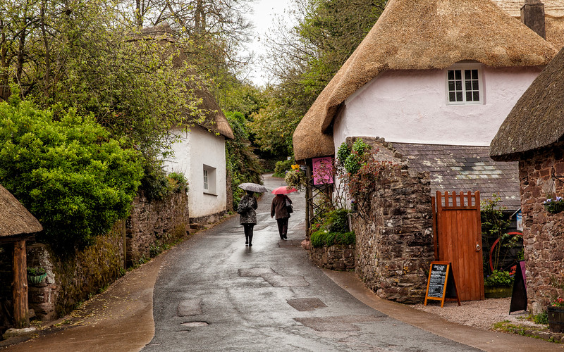 Thatched cottage in Devon