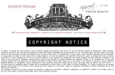 1_dp_letterhead_copy_right_notice
