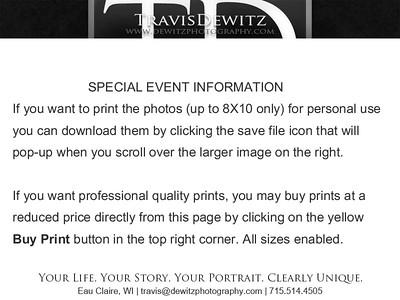 DP Gallery Page Fair 2