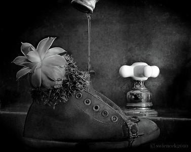 Steve Wiencek - Think Outside The Shoe (DSS Round #41: Shoes)