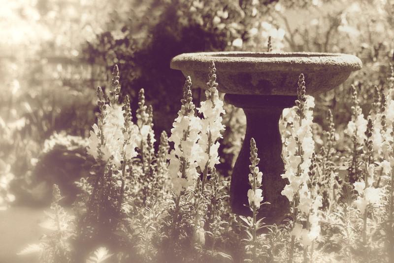 GretaPics - Secret Garden