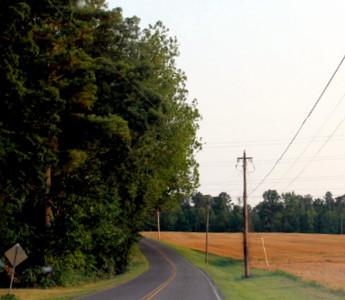 grandmaR - Rural road