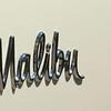 sciurusniger - Chevy Malibu