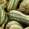 sweetharmony - Green Striped Cushaw