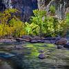 dlplumer - Lime On The Rocks
