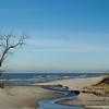 1203 - December Beach
