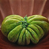 GretaPics - Force of Nature (Heirloom Tomato)