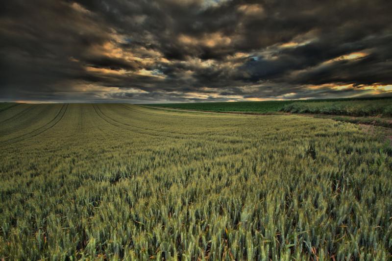kentwaller - harvest blessing