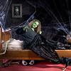 """Porter - No Rest for the Wicked<br /> Composite gallery here: <a href=""""http://stephonie.smugmug.com/gallery/8229470_J4upd/1/537955975_sg7vM"""">http://stephonie.smugmug.com/gallery/8229470_J4upd/1/537955975_sg7vM</a>"""