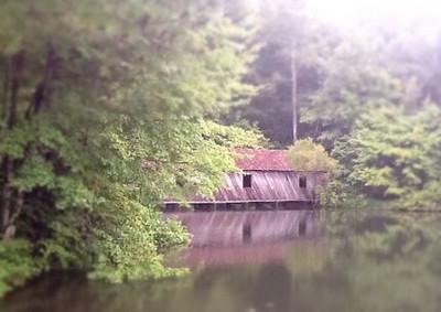 kentwaller - covered bridge