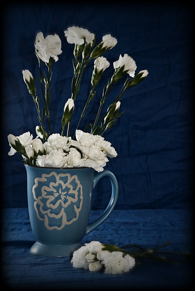 Mad Cat - White Carnations with Blue