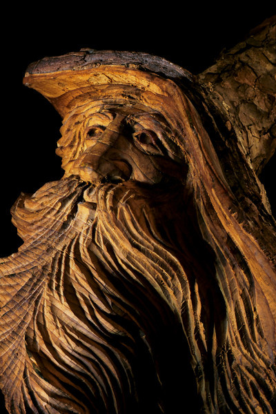 tinamarie52- Old Man of the Wood
