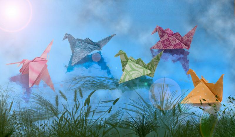 divamum - Lake Origami