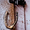 "PupWeb - ""Recycled Luck"" One horses shoes is another mans door handle."