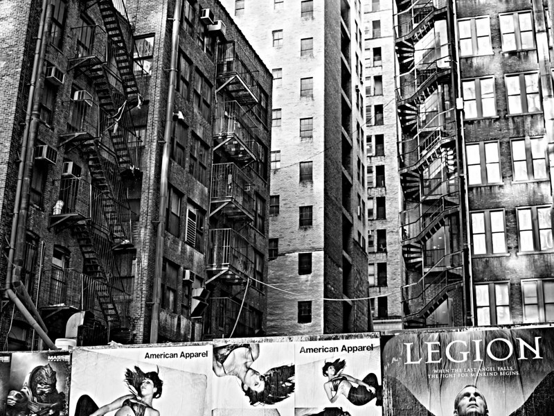 lizzard_nyc  - Gentrification