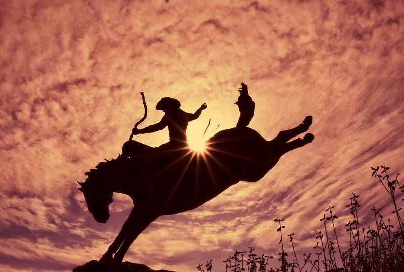learnin - Ride 'Em Cowboy