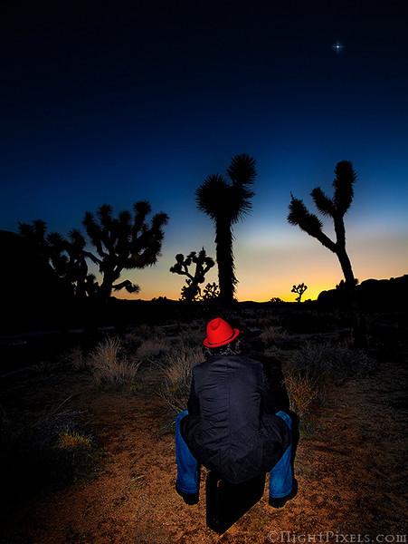 nightpixels - Looking Ahead