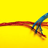 ShinRisen - Love Like String Theory