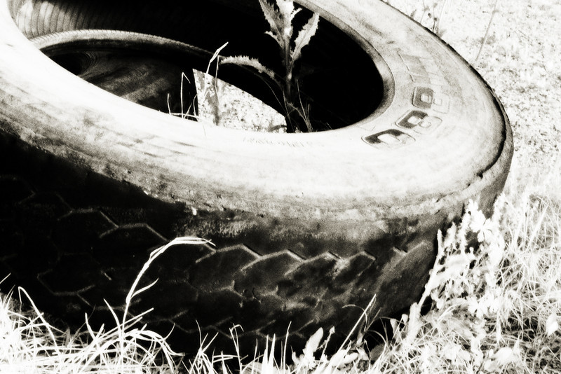 sundaresh - End of the road, at least for this tire.