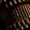 trevor - Spinning Rust