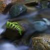 bradpowellphoto - Benson Creek Currents