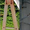"""scas - Quarks<br /> <br /> <a href=""""http://www.castwickphoto.com/Competitions/DSS-52-Alphabet-Soup/12423858_r4WQp#891265651_2i9y5"""">http://www.castwickphoto.com/Competitions/DSS-52-Alphabet-Soup/12423858_r4WQp#891265651_2i9y5</a>"""