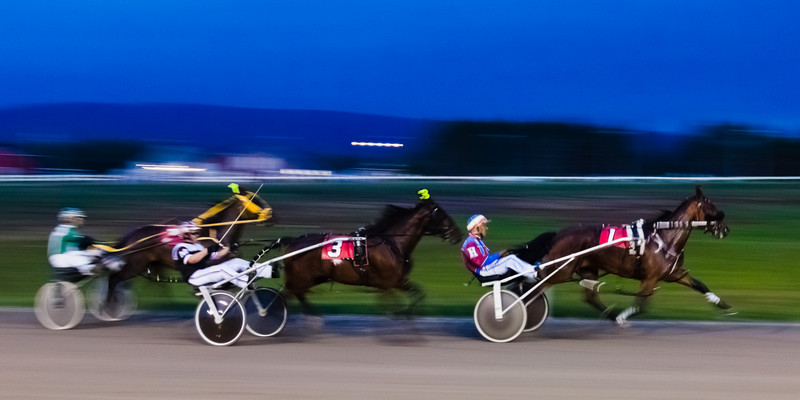 photo-bug - Harness race