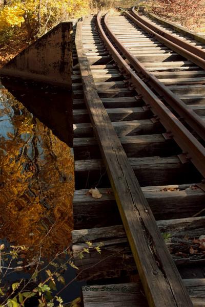 BSGreen - Tracks to Autumn