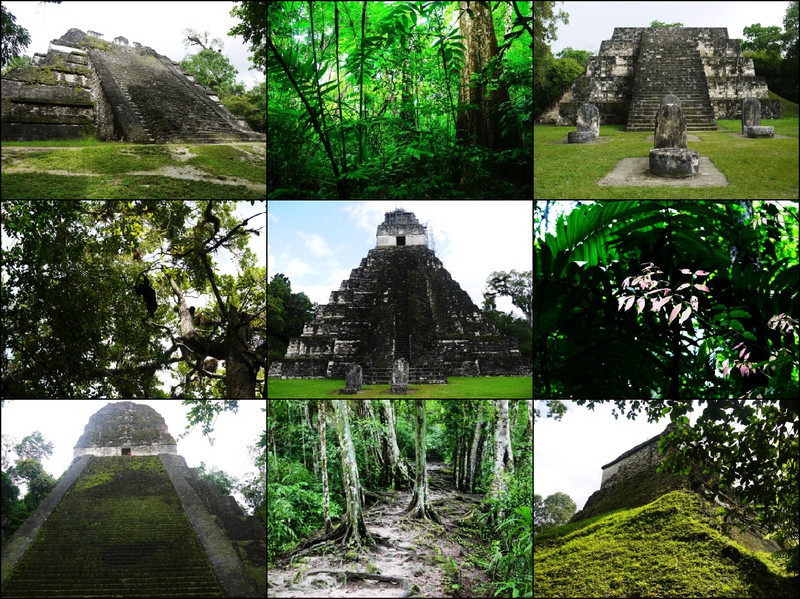 sfau - Tikal