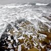 billseye - Seaflow: La Jolla Cove, San Diego, CA