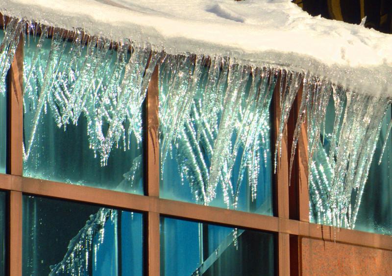 konomaniac - signs of a hard winter