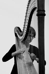 oldtown_dreamer - the harp