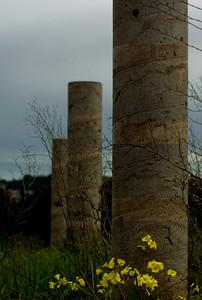 oldtown_dreamer - tide markers
