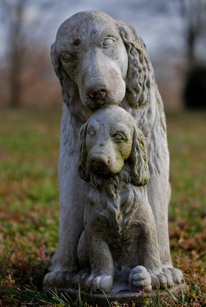 kwickers - Stone Puppies