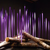 DonRicklin - Chihuly glass - Birch Logs with Neodymium Reeds.