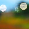 DsrtVW - OOF Lens Bubbles