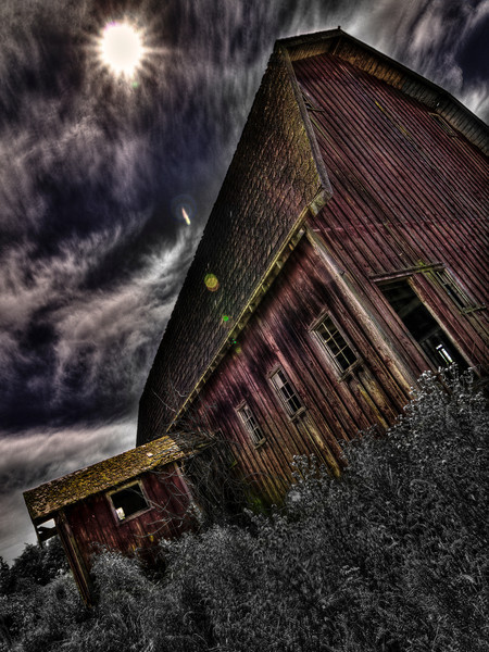 """bf2015 - Withered Past Exposures <blockquote><b><a href=""""http://bf2015.smugmug.com/Other/DSS-81/18141590_xLjz22"""" target=""""_blank"""">here</a></b></blockquote>"""