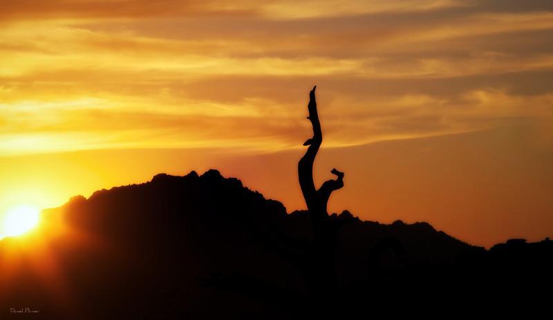 dlplumer - Setting Sun