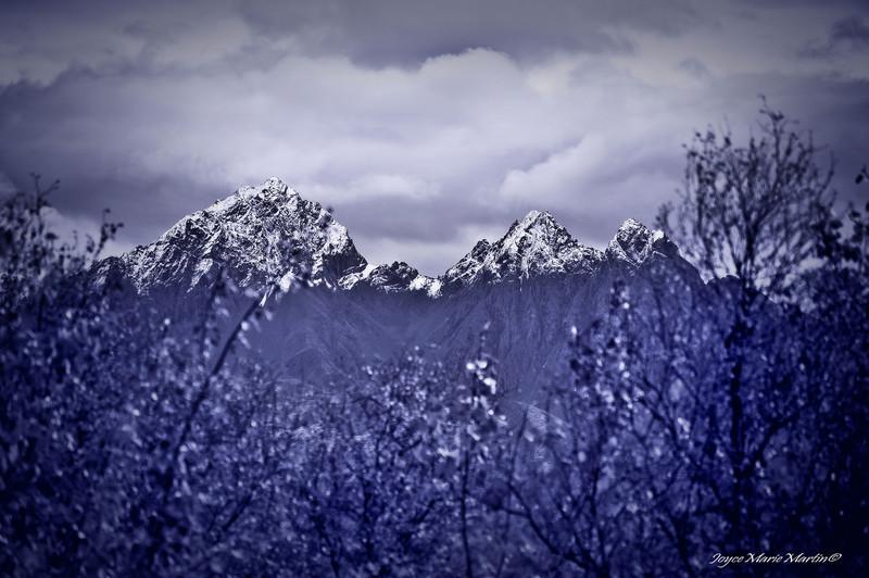 JAG - Peaks Through Trees