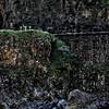 "torrbrae - Dead Man's Curve <a href=""http://torrbraeenterprises.smugmug.com/photos/newexif.mg?ImageID=1534033076&ImageKey=Np8FsRd"" target=""_blank""> EXIF</a> <a href=""http://torrbraeenterprises.smugmug.com/photos/newexif.mg?ImageID=1534033098&ImageKey=ZNrnsNs"" target=""_blank""> EXIF</a> <a href=""http://torrbraeenterprises.smugmug.com/photos/newexif.mg?ImageID=1534033115&ImageKey=WRfWB82"" target=""_blank""> EXIF</a>"