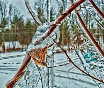 seaforth - Cold Capture