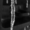 endurodog - Dripping Ice