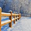Endurodog - New Snow