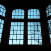 MrsCue - Library Windows