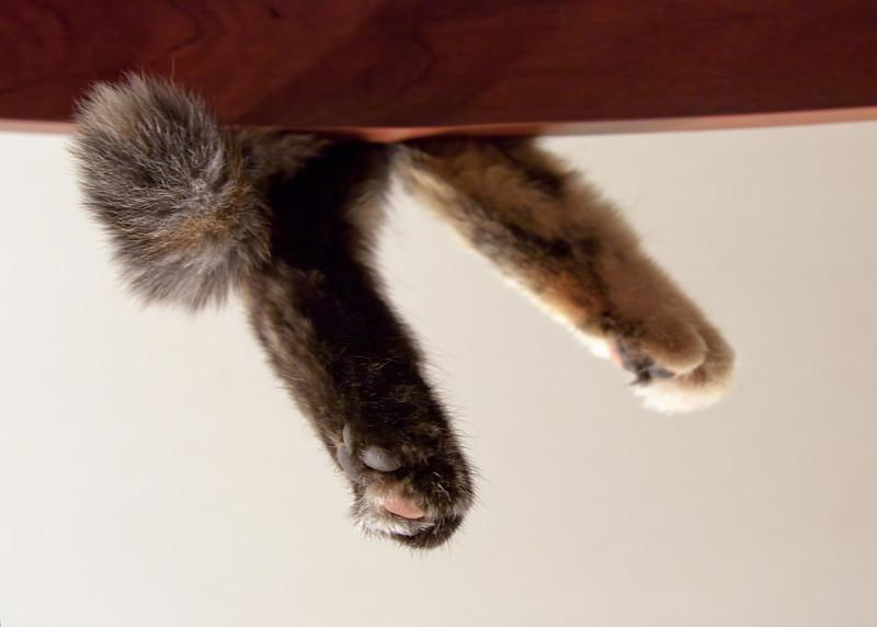 lkbart - Feet don't fit