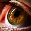 NelsonK - In My Daughter's Eye
